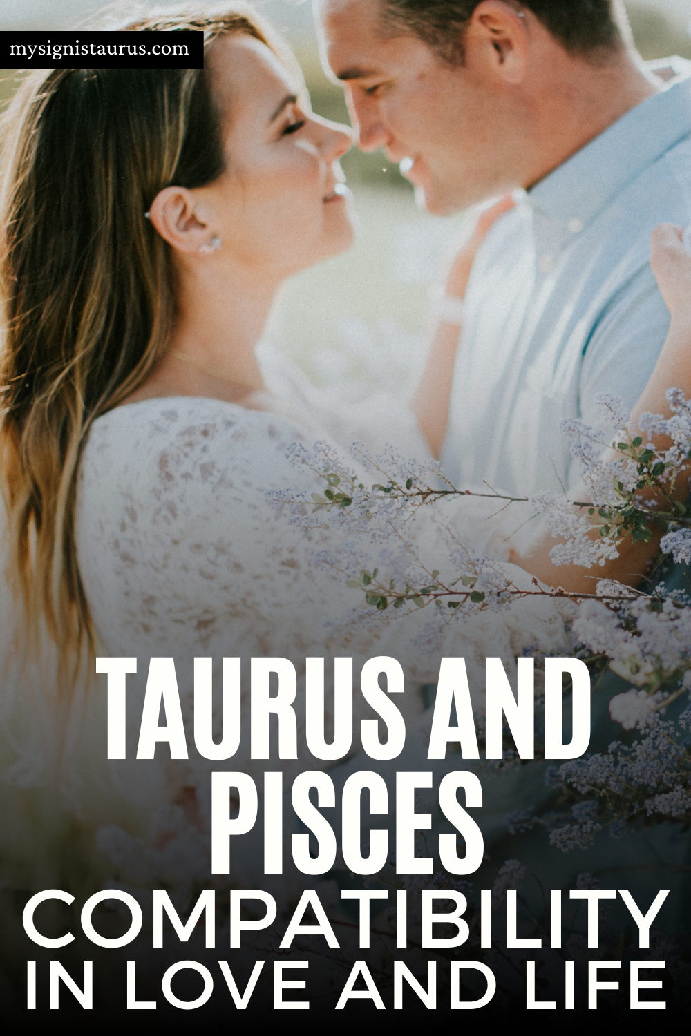 Taurus And Pisces Compatibility In Love And Life  #taurus #pisces #tauruslove #astrology #zodiac